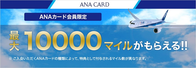 anacardcampaign